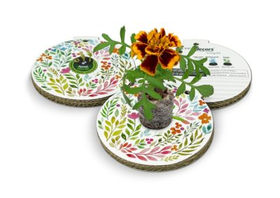 eco-decors-pallina-ecologica-primavera-fiori-e-foglie-calendula
