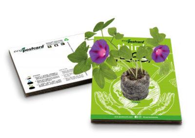 eco-postcard-green