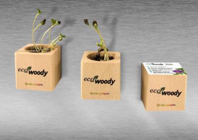 MOCKUPE-ecowoody-magnetici